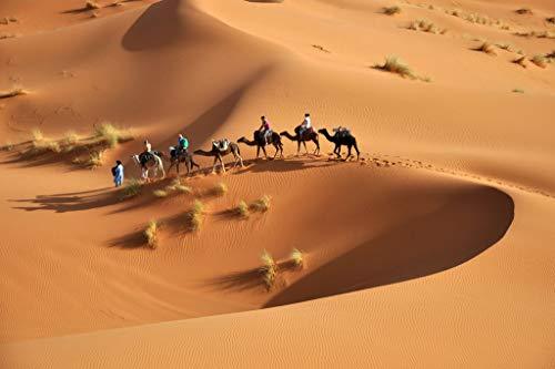 Rompecabezas Adulto 1000 Piezas Equipo De Camellos En El Desierto Juguete De Regalo Ideal La Mejor Decoración Para El Hogar De Bricolaje 75x50cm(29.5x19.7 pulgadas)