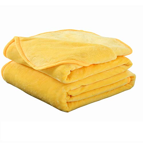 Soft Queen Size Blanket Warm Fuzzy Microplush Lightweight Thermal Fleece Blankets