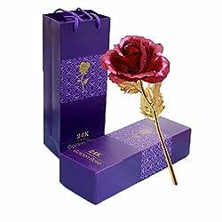 TINYOUTH 24 Karat Vergoldete Rose Rot, 24K Goldene Rose Handgefertigt Konservierte Rose, Blattgold Rose mit Geschenkbox für Geburtstag Geschenk Freundin Muttertag Hochzeitstag Künstliche