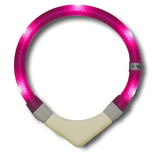 LEUCHTIE® Leuchthalsband Plus hotpink Größe 42,5 I nachleuchtend phosphoreszierendes Batterieteil I LED Halsband für Hunde I 100 h Leuchtdauer I wasserdicht I enorm hell