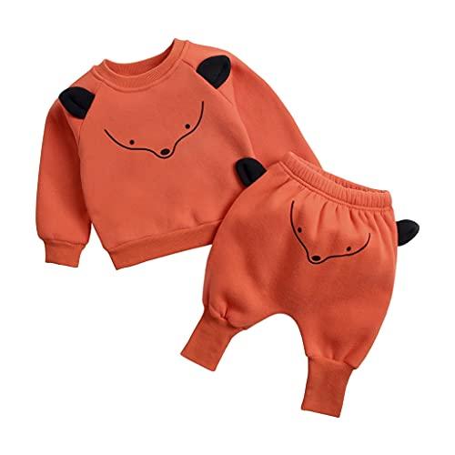UMore 2Pcs Niños Ropa con Capucha Ropa Sudadera Top + Pantalones Bebés Chándal Conjuntos