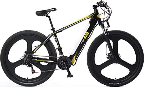 mountain bike taglia l I-Bike