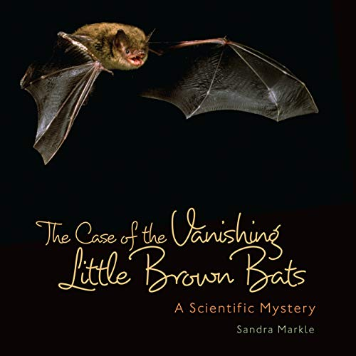 The Case of the Vanishing Little Brown Bats: A Scientific Mystery (Sandra Markle's Science Discoveries) (English Edition)