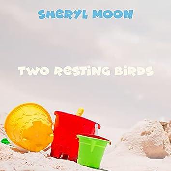 Two Resting Birds