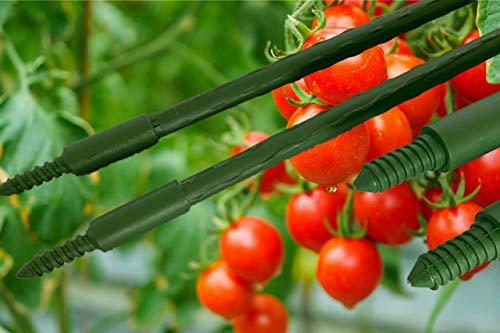maxpack® 30 Stück Pflanzstäbe als Stecksystem für individuelle Länge - Pflanzenstab Tomatenstäbe Rankhilfe in grün Grundlänge - 75cm (H: 75 cm - 11 mm)