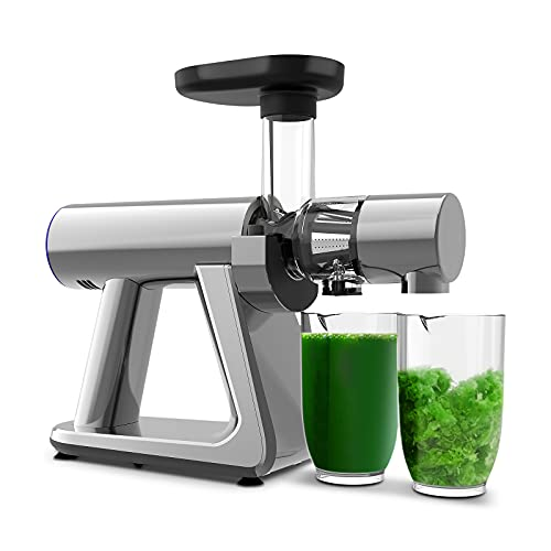 Juicer Machines, ZUUKOO Slow Masticating Juicer, Cold Press Extractor with Quiet Motor & Reverse Function, Easy to Assemble and Clean, with Brush, Juice Recipes for Vegetables and Fruits, BPA-Free