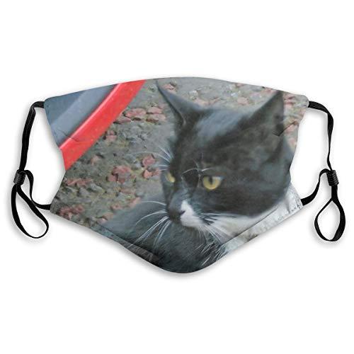 Tuxedo Cat Mask Face Guard Face Shield Face Masks Medium Filter2pcs Black