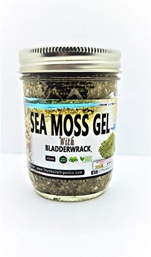 (Dr. Sebi) Sea Moss and Bladderwrack Gel Mix