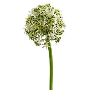 31″ Silk Allium Flower Spray -Cream (pack of 12)