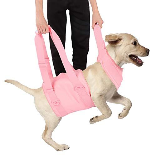 Arnés de elevación de perros, rehabilitación de mascotas Ascensores chalecos, soporte de cuerpo completo y eslinga de recuperación, correas transpirables ajustables para viejos, discapacitados, herida