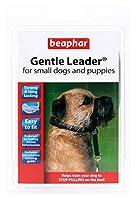 ビーファー 小型犬および子犬用 ジェントルリーダー、Sサイズ、ブラック リード (並行輸入品)