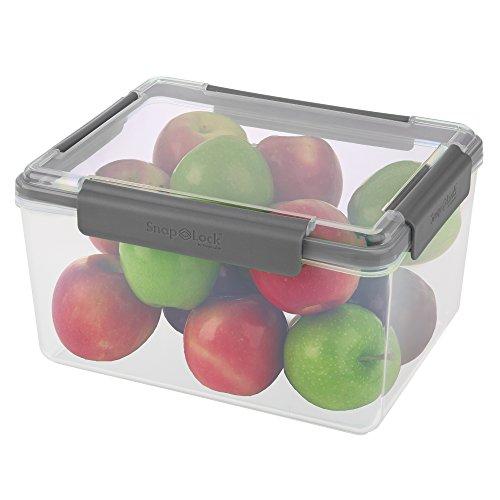 SnapLock by Progressive Behälter für 30 Tassen, grau, leicht zu öffnen, auslaufsichere Silikondichtung, Deckel zum Abbrechen, stapelbar, BPA-frei