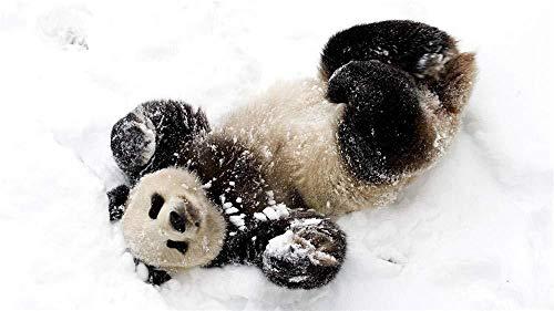 YUMUYAO Rompecabezas 1000 Piezas niños Panda Juega