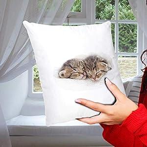 Geschenk Kissen Katze mit Katzenmotiv Nap Time, Geschenk für Katzenliebhaber, Zierkissen Dekokissen Bezug inkl. Füllung…