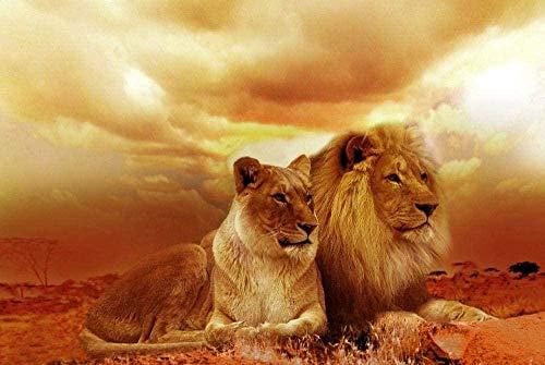 Malen nach Zahlen für Erwachsene Löwenpaar Tiere Digital Oil Canvas Mal-Kits für Kinder Kinder Geburtstag Hochzeit Neue Unterkunft nach Hause