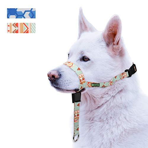ILEPARK Hunde Maulkorb Hundehalfter aus Leder - Hundehalsband-Leder der Ziehen verhindert, Einstellbar, Maulkorb Hund(L, Frühling Sommer)