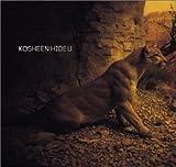 Hide U by Kosheen (2001-12-04)