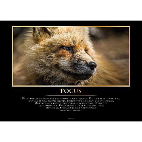 GREAT ART® Edle Motivationsposter – Focus – Fuchs Fokussiere Tier Portrait Geist Intention Organisieren Ziel Inspiration Spruch Inneneinrichtung Foto Deko (Din A2 42 x 59,4 cm)