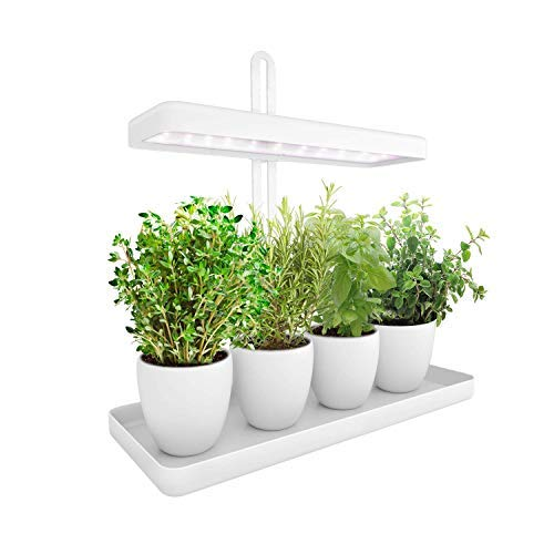 LED Indoor Herb Garden, Height Adjustable GrowLED Plant Grow Indoor Garden Light, LED Germination Kit with Smart Timer, Suitable for Various Plants, White Light