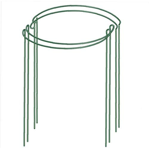 NaisiCore Plant Support Stake, 4pcs Metal Garden Plant Supports, Green Half Round Garden Plant Support Ring Cage for Tomato, Roses, Hydrangea, Flowers Vine (3525cm)