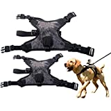 Dog Harness Mount For GoPro With Action Camera Mount Recording From Dog Perspective With Adjustable Collar 3 Fetch Strap Belt Elastic Band Comfort Vest For Medium Large Dogs Walking Jogging