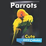 Cute Parrots Calendar 2022: 12 Month Mini Calendar from Jan 2022 to Dec 2022 , Monthly Square Calendar, Wildlife Calendar 2022 , Birds Calendar 2022
