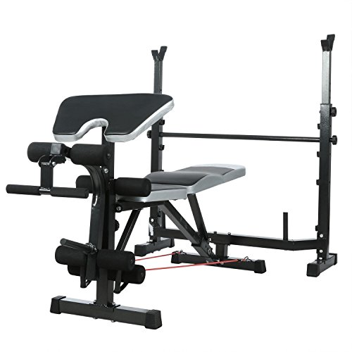ANCHEER Adjustable Olympic Workout Bench with Squat Rack, Leg Extension, Preacher Curl, and Weight Storage Weightlifting Bench for Full Body Exercise(Silver)