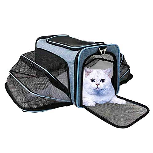 ABISTAB Transportbox Katze und Hunde Hundebox faltbar Tragetasche für Auto- und Flugreisen geeignet Tragetasche Maxi zweiseitig ausklappbar mit Langer Shultergurt