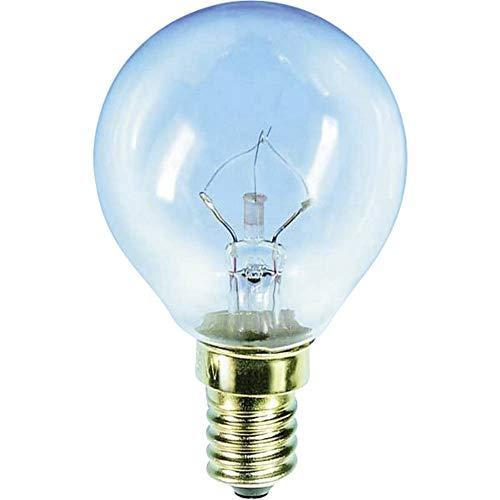 Glühlampe Barthelme E14, 40 W Backofenlampe 892240 E14 Leistung: 40 W