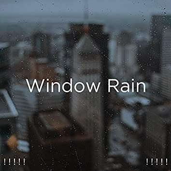 ! ! ! ! ! Window Rain ! ! ! ! !