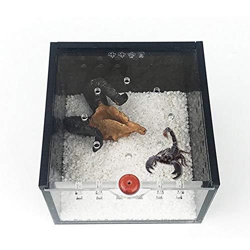 Zuchtbox transparent Kunststoff belüftet für Reptilien-Käfig Schlüpfen Behälter für Schildkröte Eidechse Spider Skorpion