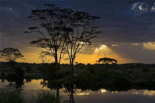 FAWFAW Giochi E Puzzle 1000 Pezzi, Africa Tramonto Acacia Alberi Paesaggio della Tanzania, 1500/1000/500/300 Pezzi, Grande Gioco di Puzzle