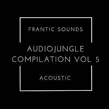Frantic Sounds Acoustic