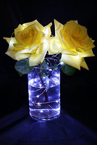 Brightz BloomBrightz White LED Floral Accent Light