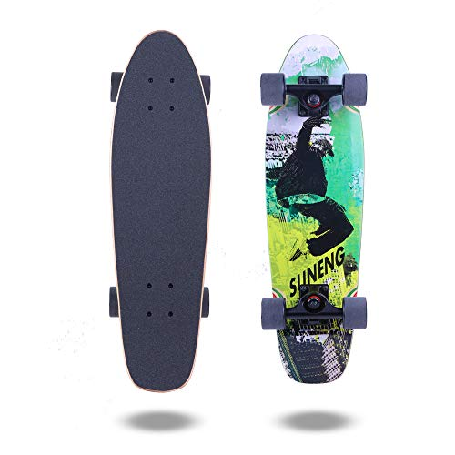 FlyBee Boards 27inch Mini crusier Skateboard Complete,Skateboard for Beginner,Canadian Maple Deck