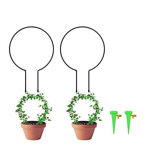æ— 2 Stück Metall Garten Rankgitter rund Pflanze Kletterhilfe mit Selbstbewässerungsvorrichtungen Dekorative Topfpflanzen Stützstäbe kleines Rankgitter für Zimmerpflanzen