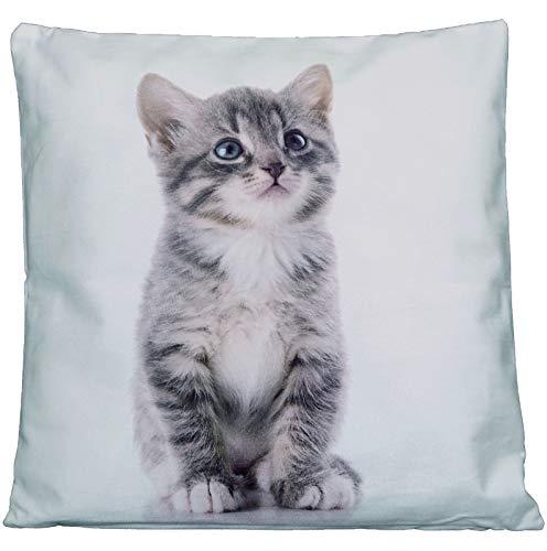 Kissenhüllen 40x40 cm Dekokissen Kissenbezug Fotokissen Kissen Hüllen Bezug Bezüge Cat (Katze #4149)