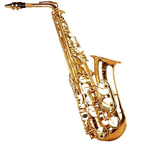 Saxophon, Anfänger, Erwachsener, Es, Altsaxophon, Leistungstest