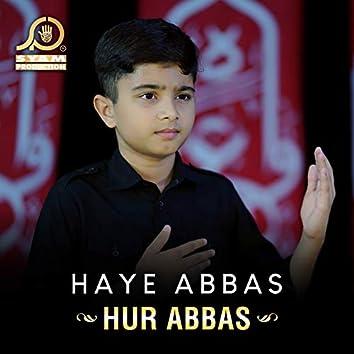 Haye Abbas - Single