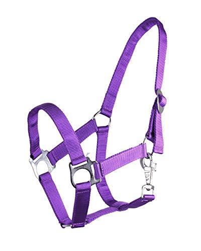 ARBO-INOX® Halfter mit Schiebeschnalle Stallhalfter Basic (Pony, lila)