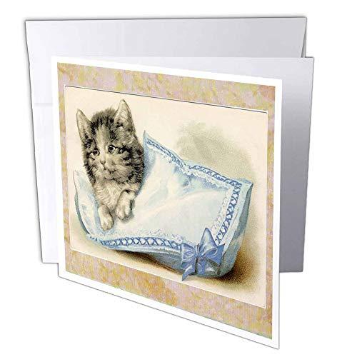 3dRose gc_35379_1 wenskaart, motief katjes op blauw en wit kussen, 15,2 x 15,2 cm, 6 stuks