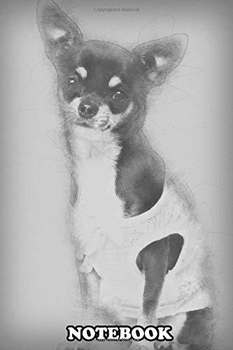 Notebook: Chihuahua Dressed Sitting And Looking At Camera Against , Journal for Writing, College Ruled Size 6' x 9', 110 Pages