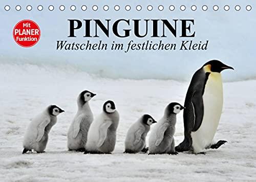 Pinguïns - Watjes in een feestelijke jurk
