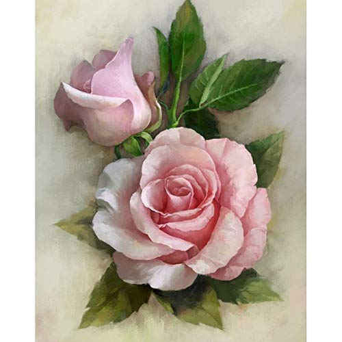 Kit de pintura de diamantes Rosa DIY 5D Pintura Diamante Kits Completos para Adultos, Kits de Pintura Diamante Perforación Completa Inicio Decoración(12 X 16 pulgadas)