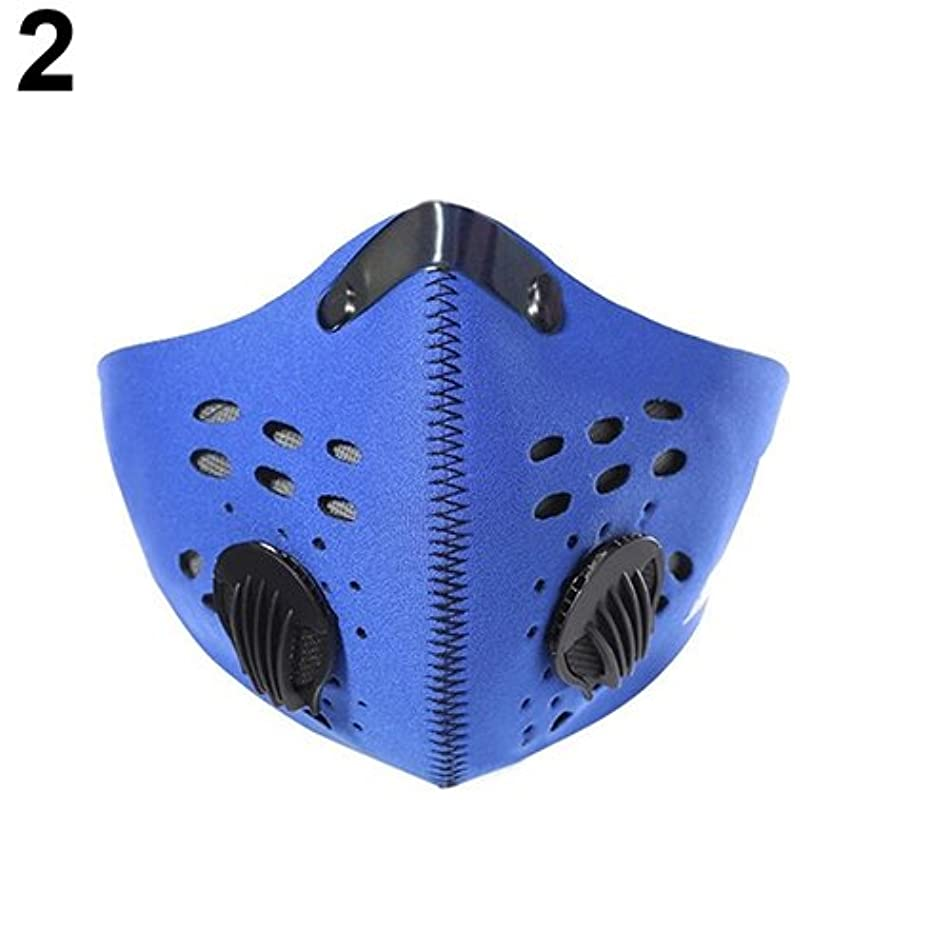 Aland-PM2.5 Activated Carbon Riding Hiking Outdoor Sports Anti-pollution City Cycling Mask - Blue