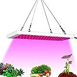 Favrison 300W LED Plant Light Grow Lamp Full Spectrum LED Grow Lights for Indoor Plants, Seeding, Breeding, Veg, Flower (54PCS LEDs)