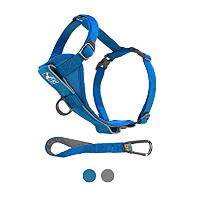 Kurgo Dog Harness | Pet Walking Harness | No Pull Harness Front Clip Feature for Training Included | Car Seat Belt | Tru-Fit Quick Release Style | Large | Blue from Kurgo