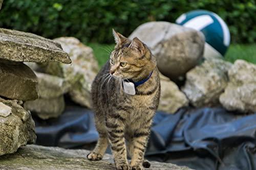Girafus Rastreador de Mascotas Mini Pro-Track-Tor Localizador con Ondas de Radio Anti-Pérdida Gato, Perro - 1 transmisor + Cargador Incluido