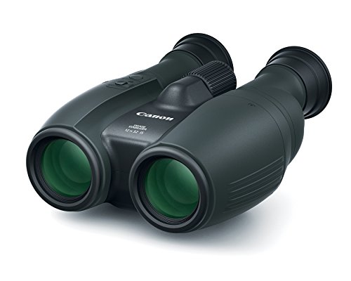 Canon Cameras US 12X32 is Image Stabilizing Binocular, Black (1373C002)