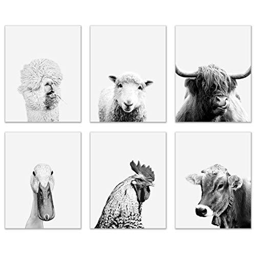 Minimalist Black and White Barn Animal Prints - Set of 6 (8x10 Inches) Glossy Monochromatic Boho Rustic Farmhouse Wall Art Decor - Highland Cow - Duck - Rooster Chicken - Llama Alpaca - Sheep